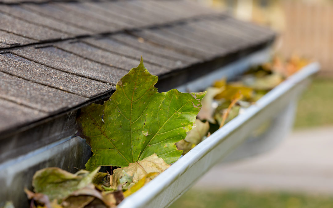 Tackle These 8 Home Maintenance Tasks This (and Every ) Fall